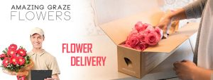 Buy Flowers From Online Store
