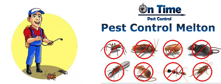 pest control hoppers crossing